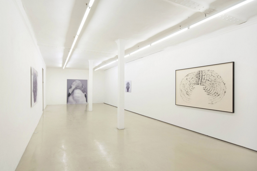 http://www.williammackrell.com/files/gimgs/th-1_Human condition and lips viewweb.jpg